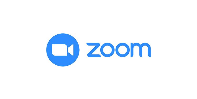 inst_zoom